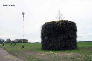 Aolvolk-Paasbultkeuring-201205